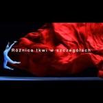 Sony – Xperia Z2, Dostępna w sieci Play