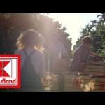 Kaufland - Zboże i Jabłka
